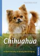 Cover-Bild zu Chihuahua von Holler, Birgit