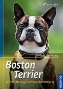 Cover-Bild zu Boston Terrier von Kämmerling, Annegret