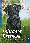 Cover-Bild zu Labrador Retriever (eBook) von Rauth-Widmann, Brigitte