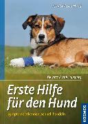 Cover-Bild zu Erste Hilfe für den Hund (eBook) von Lausberg, Frank