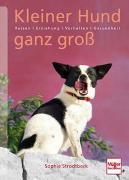 Cover-Bild zu Kleiner Hund ganz groß von Strodtbeck, Sophie