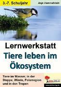 Cover-Bild zu Lernwerkstatt Tiere leben im Ökosystem (eBook) von Hammelstein, Anja