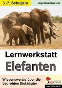 Cover-Bild zu Lernwerkstatt Elefanten (eBook) von Hammelstein, Anja