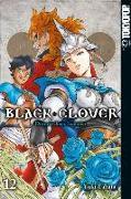 Cover-Bild zu Tabata, Yuki: Black Clover 12