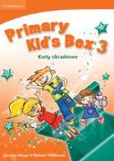 Cover-Bild zu Primary Kid's Box Level 3 von Nixon, Caroline