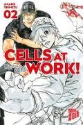Cover-Bild zu Shimizu, Akane: Cells at Work! 2