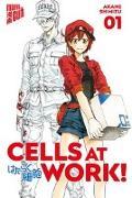 Cover-Bild zu Shimizu, Akane: Cells at Work! 1