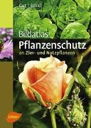 Cover-Bild zu Bildatlas Pflanzenschutz an Zier- und Nutzpflanzen von Gut, Philipp
