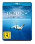 Cover-Bild zu Tortuga - Die unglaubliche Reise der Meeresschildkröte von Finn, Melanie