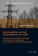 Cover-Bild zu Petrik-Haltiner, Tanja Sarah: Spannungsfelder rund um die Stromkosten und -tarife