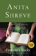 Cover-Bild zu Fortune's Rocks (eBook) von Shreve, Anita