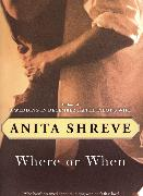 Cover-Bild zu Where or When (eBook) von Shreve, Anita