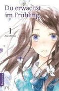 Cover-Bild zu Shima, Asato: Du erwachst im Frühling 01