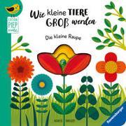 Cover-Bild zu Clima, Gabriele: Wie kleine Tiere groß werden: Die kleine Raupe