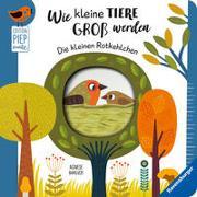 Cover-Bild zu Clima, Gabriele: Wie kleine Tiere groß werden: Die kleinen Rotkehlchen