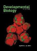 Cover-Bild zu Developmental Biology von Barresi, Michael J.F.