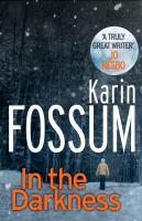 Cover-Bild zu In the Darkness von Fossum, Karin