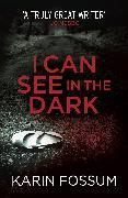 Cover-Bild zu I Can See in the Dark (eBook) von Fossum, Karin