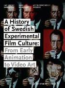 Cover-Bild zu A History of Swedish Experimental Film Culture: From Early Animation to Video Art von Andersson, Lars Gustaf