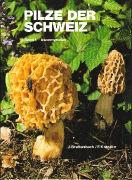 Cover-Bild zu Breitenbach, Josef: Pilze der Schweiz 01. Ascomyceten