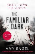 Cover-Bild zu Engel, Amy: The Familiar Dark