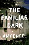 Cover-Bild zu Engel, Amy: The Familiar Dark (eBook)