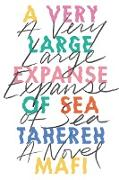 Cover-Bild zu A Very Large Expanse of Sea von Mafi, Tahereh