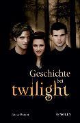 Cover-Bild zu Geschichte bei Twilight von Reagin, Nancy (Hrsg.)