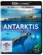 Cover-Bild zu Jerome Bouvier (Schausp.): Antarktis - Leben am Limit 4K Ultra HD
