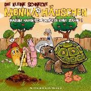 Cover-Bild zu Die kleine Schnecke Monika Häuschen 47: Warum haben Schildkröten keine Zähne? von Naumann, Kati