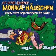 Cover-Bild zu Die kleine Schnecke Monika Häuschen 49: Warum haben Nacktschnecken kein Haus? von Naumann, Kati