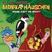 Cover-Bild zu Die kleine Schnecke Monika Häuschen 26. Warum klopft der Specht? von Naumann, Kati