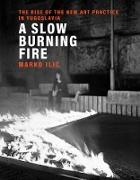 Cover-Bild zu A Slow Burning Fire (eBook) von Ilic, Marko