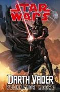 Cover-Bild zu Soule, Charles: Star Wars Comics: Darth Vader (Ein Comicabenteuer): Brennende Meere
