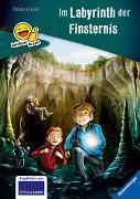 Cover-Bild zu Erstleser - leichter lesen: Das Labyrinth der Finsternis von Lenk, Fabian