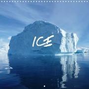 Cover-Bild zu ICE (Wall Calendar 2021 300 × 300 mm Square) von Kreissig, Bernd