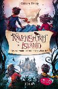 Cover-Bild zu Philip, Gillian: Die Geheimnisse von Ravenstorm Island