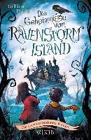 Cover-Bild zu Philip, Gillian: Die Geheimnisse von Ravenstorm Island - Die verschwundenen Kinder (eBook)