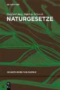 Cover-Bild zu Schrenk, Markus: Naturgesetze (eBook)