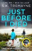 Cover-Bild zu Just Before I Died (eBook) von Tremayne, S. K.