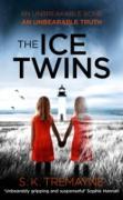 Cover-Bild zu Ice Twins (eBook) von Tremayne, S. K.