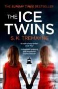 Cover-Bild zu The Ice Twins von Tremayne, S. K.