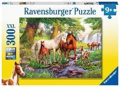 Cover-Bild zu Wildpferde am Fluss