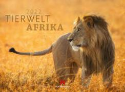 Cover-Bild zu Ackermann Kunstverlag (Hrsg.): Tierwelt Afrika Kalender 2022
