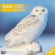 Cover-Bild zu Ackermann Kunstverlag (Hrsg.): Eulen Kalender 2022 - 30x30