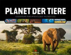 Cover-Bild zu Ackermann Kunstverlag (Hrsg.): Planet der Tiere Kalender 2022
