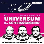 Cover-Bild zu Das Universum ist eine Scheißgegend (Audio Download) von Puntigam, Martin