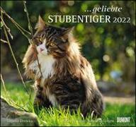 Cover-Bild zu DUMONT Kalender (Hrsg.): geliebte Stubentiger 2022 - DUMONT Wandkalender - mit den wichtigsten Feiertagen - Format 38,0 x 35,5 cm