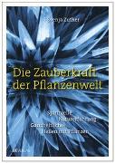 Cover-Bild zu Die Zauberkraft der Pflanzenwelt von Zuther, Svenja