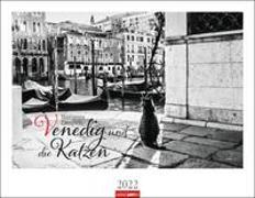 Cover-Bild zu Zampieri, Marianna: Venedig und die Katzen Kalender 2022